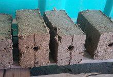 Photo of Premiaron un proyecto que produce leña reciclando cartón, papel, hojas, aserrín y viruta