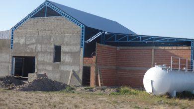 Photo of Proyectan exportar alimento balanceado para salmones a Chile desde La Adela