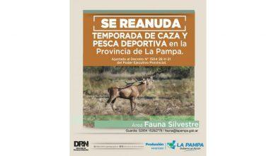 Photo of Reabren la Temporada de Caza, Pesca Deportiva y atención en Viveros Forestales