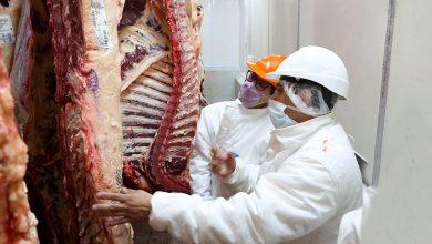 Photo of Anunciaron acuerdos de precios en carnes, frutas, verduras y productos de almacén