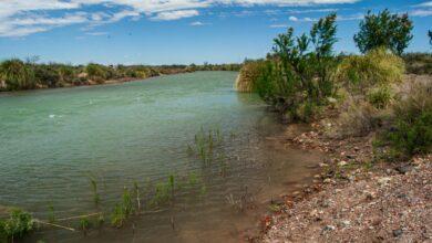 Photo of La Pampa suma dos nuevas áreas protegidas para revalorizar sus humedales
